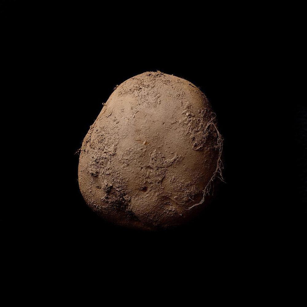 Kevin Abosch Potato #345