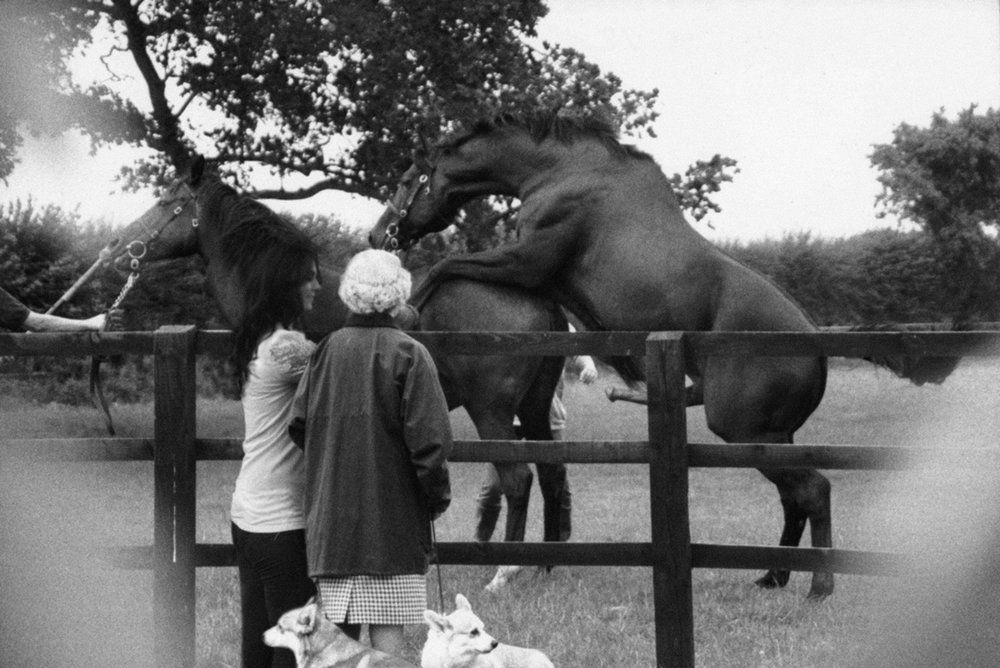 Alison Jackson,  The Queen Watches Her Horses Mate , 2014 C Type Archival Print, Framed: 33h x 45w in, Courtesy HG Contemporary