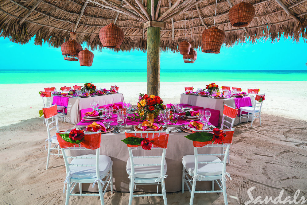 BNG_WHEN_IN_THE_TROPICS_RECEPTION_026_TRADE.jpg