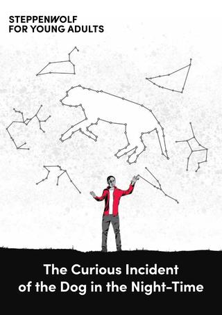 """Image Description: The Curious Incident of the Dog in the Night-Time production illustration: White background, pen drawing of sky filled with black constellations outlined, below stands boy with arms bent upward wearing red jacket and gray pants. At bottom is black earth, white text reads """"The Curious Incident of the Dog in the Night-Time"""", top left black text reads """"Steppenwolf for Young Adults""""."""