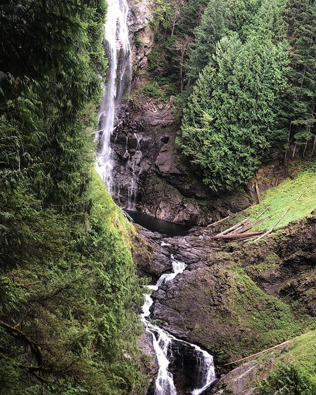 "📍Wallace Falls, WA • 4.4 miles roundtrip • 1 hour away from Seattle • doggo friendly! "" hike more, worry less 🌱"" Who's been to Wallace falls?!"