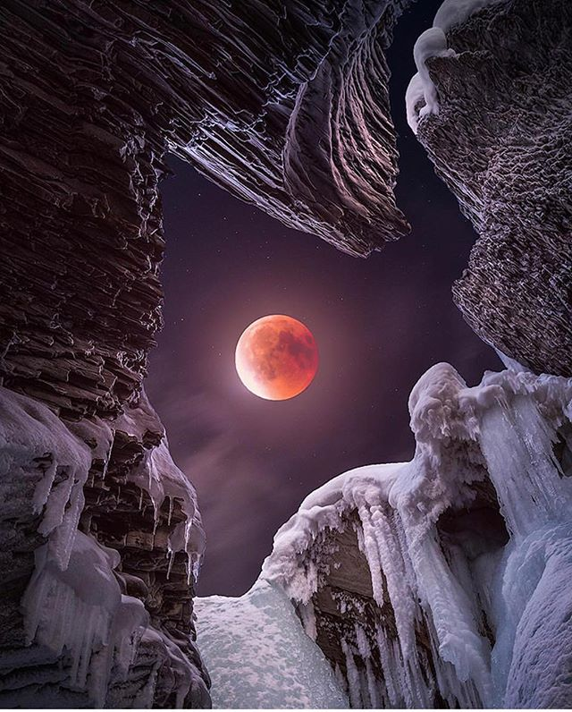 How many of you watched the Super Wolf Blood Moon! 🐺🌙 🙋🏻‍♀️ #pnwonderland • • Check out this amazing shot by @danielgreenwoodphotography