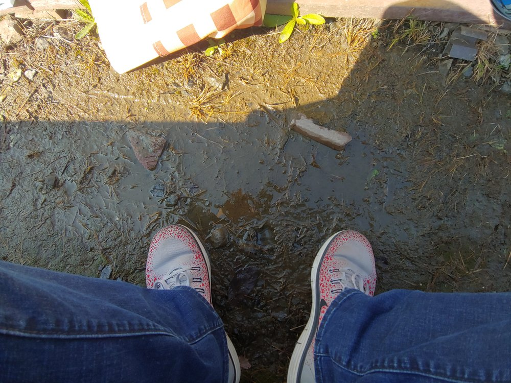 The only puddle in Japan.jpg