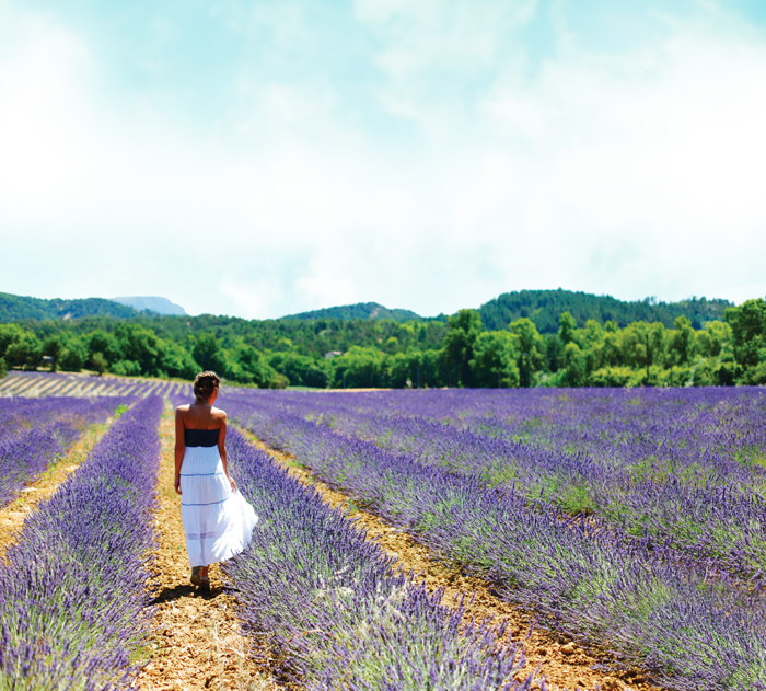 woman-in-lavender-field-blue-sky-700px-wide-lr.jpg