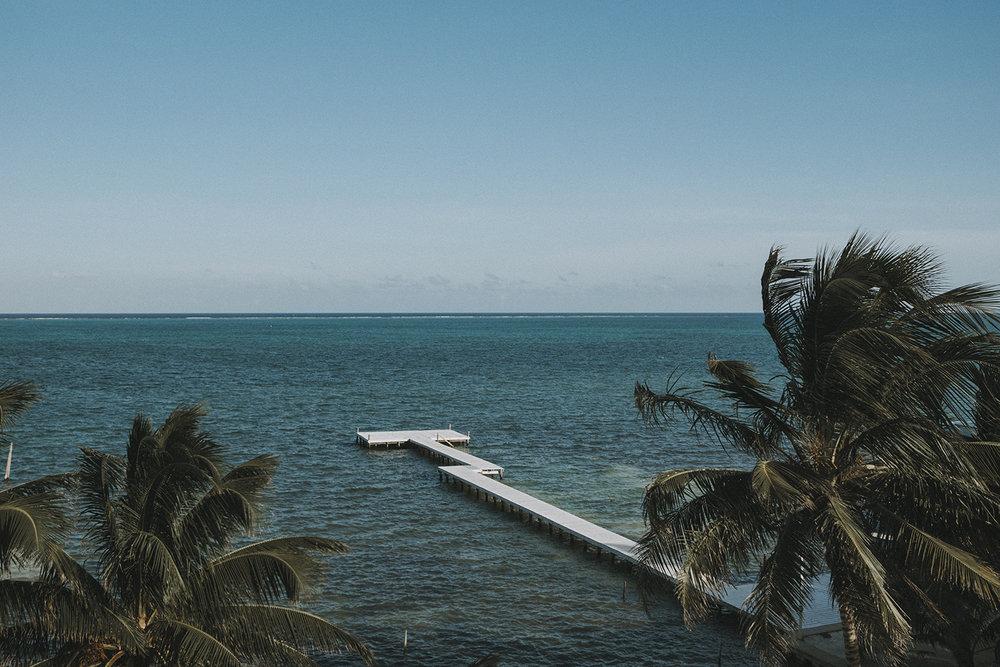 belize saye caulker island life palm trees