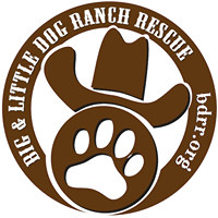 Big Dog Rescue Ranch.png