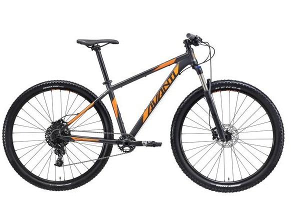premium-bike-rental.jpg