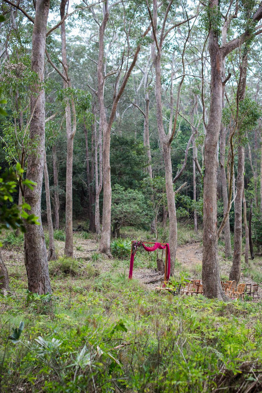 Otford Forest-66.JPG