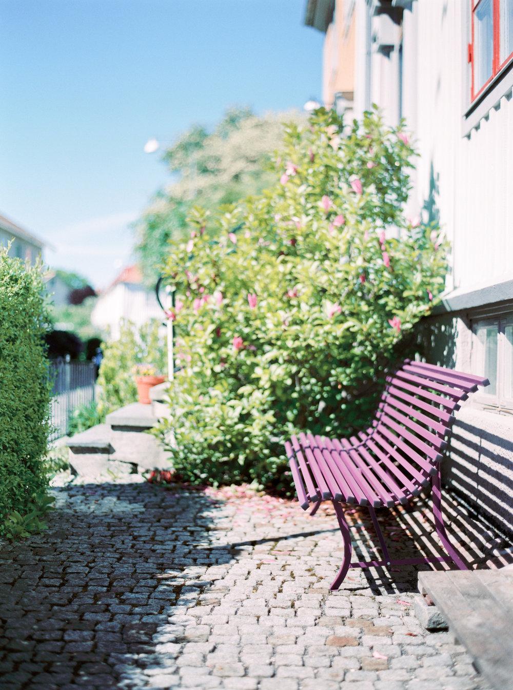 Copywrite Niklas Andersson. niklasanderssonphoto@gmail.com