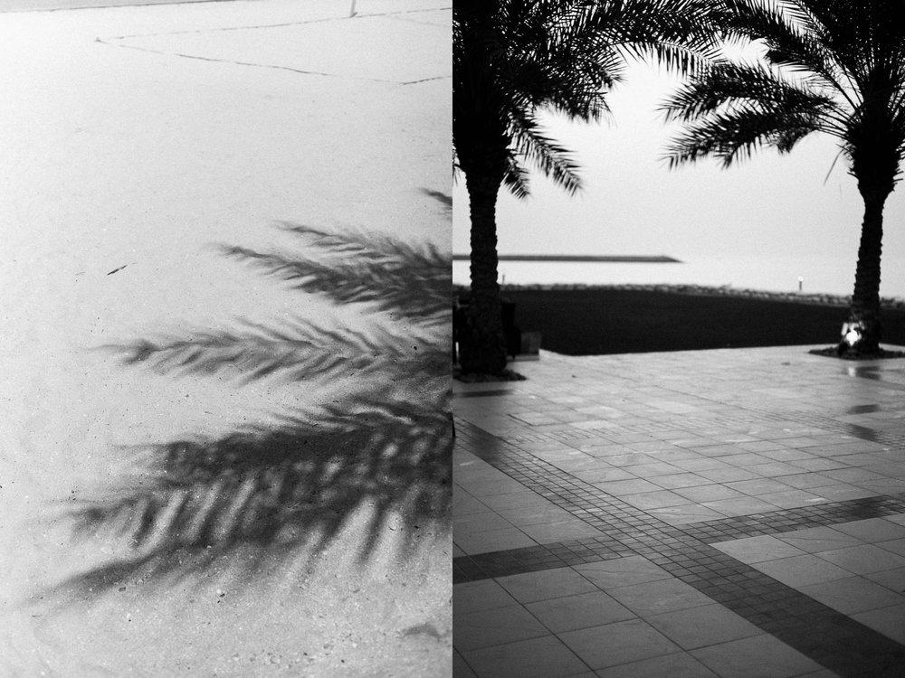 Dubai_Diptych_5.jpg