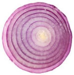 Half onion.png