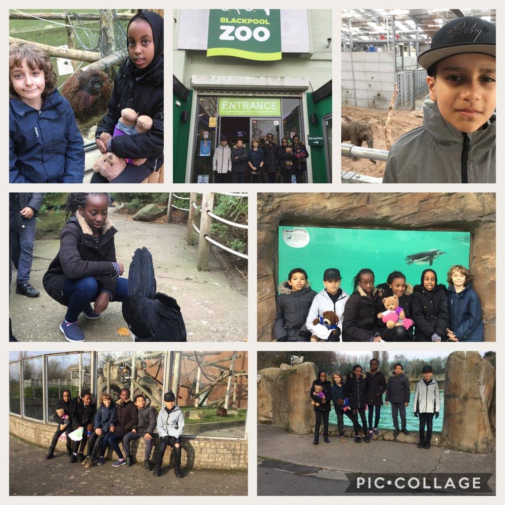 Blackpool Zoo.jpeg