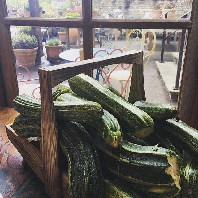 Bumper crop! #kilvercourt #shoppingday #shortbreaks #romanticgetaways #familyholidays #dogholidays #visitbath #bathuk #traveluk #Iheartbath #countrylife #somerselife #somerset #condenasttraveler #weekendgetaway #weekendaway #visitengland