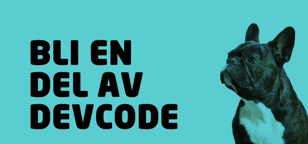 DevCode fokuserar på konsulterna