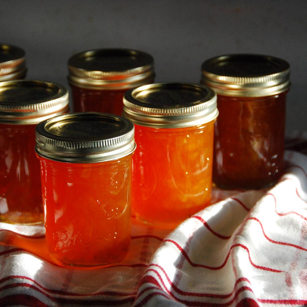 grapefruit-marmalade-4