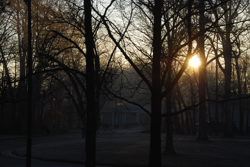 201303 morning-light-1