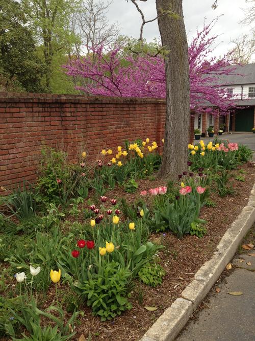 2013-04-19-spring-market-6
