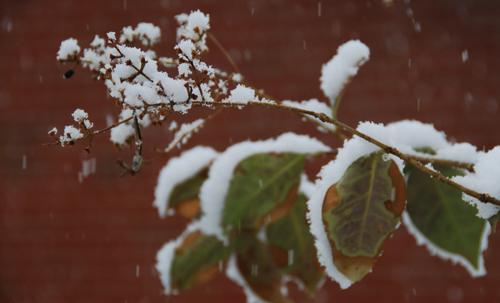 20140325 snow-day-02