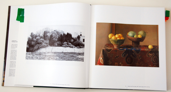 fav-art-books-16 claudio-bravo-1-2