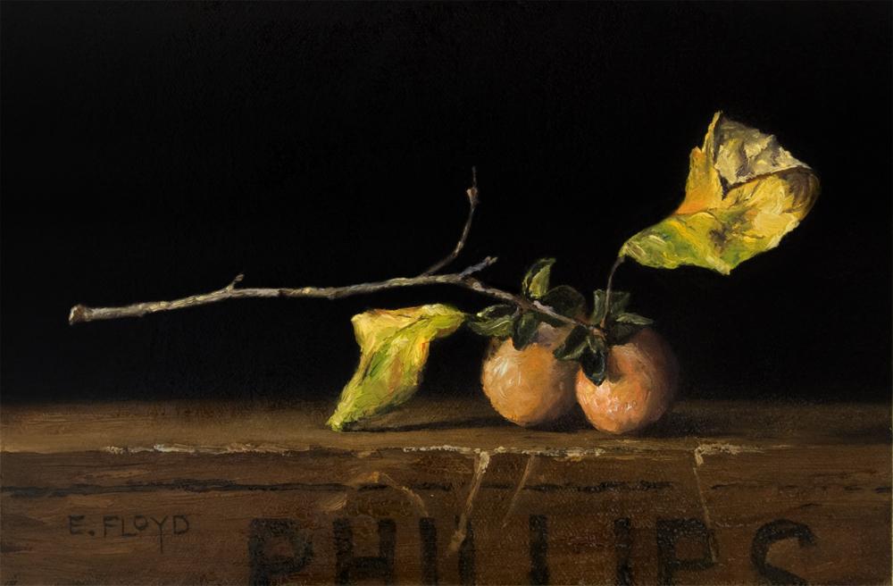 20141018-058 wild-persimmons-2