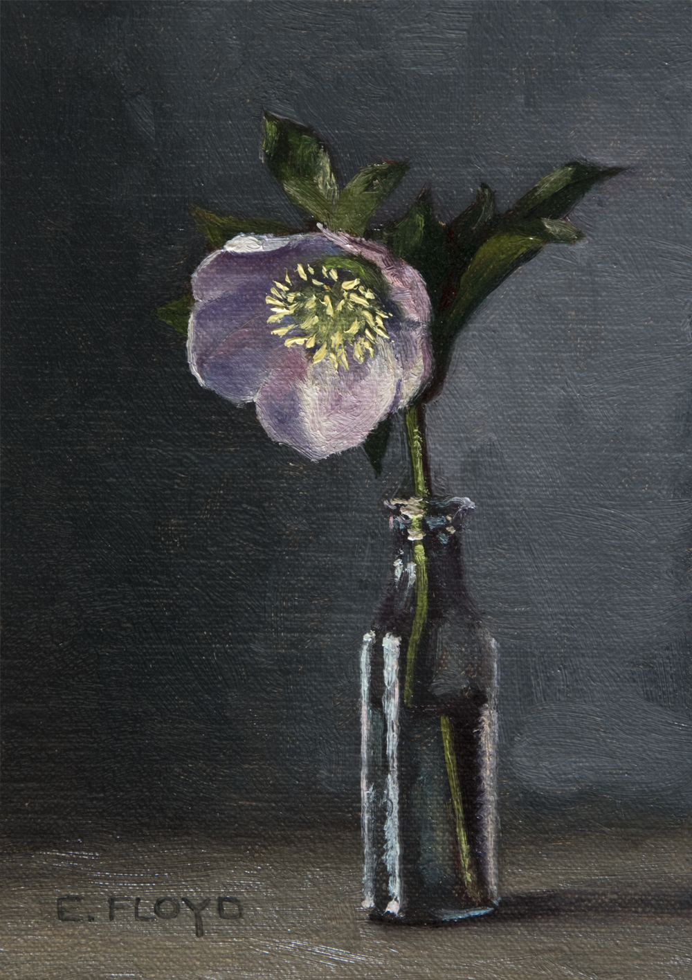 Hellebore by Elizabeth Floyd, 7 x 5 inches, oil on linen panel