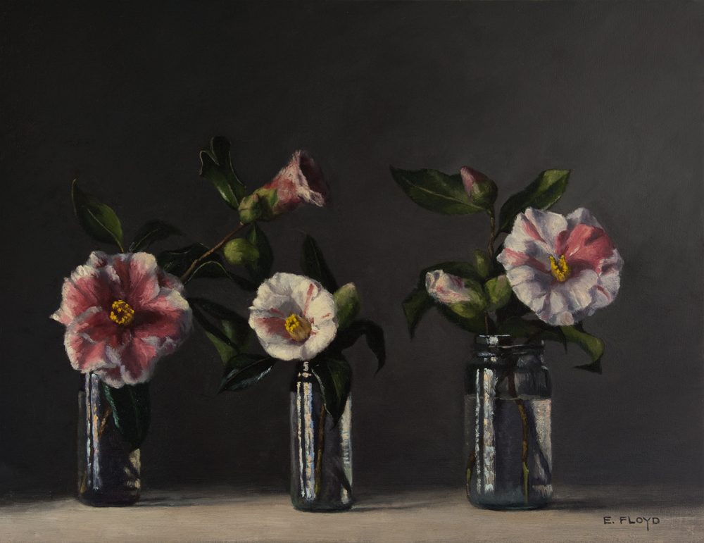 Camellias by Elizabeth Floyd, 14 x 18 inches, oil on linen