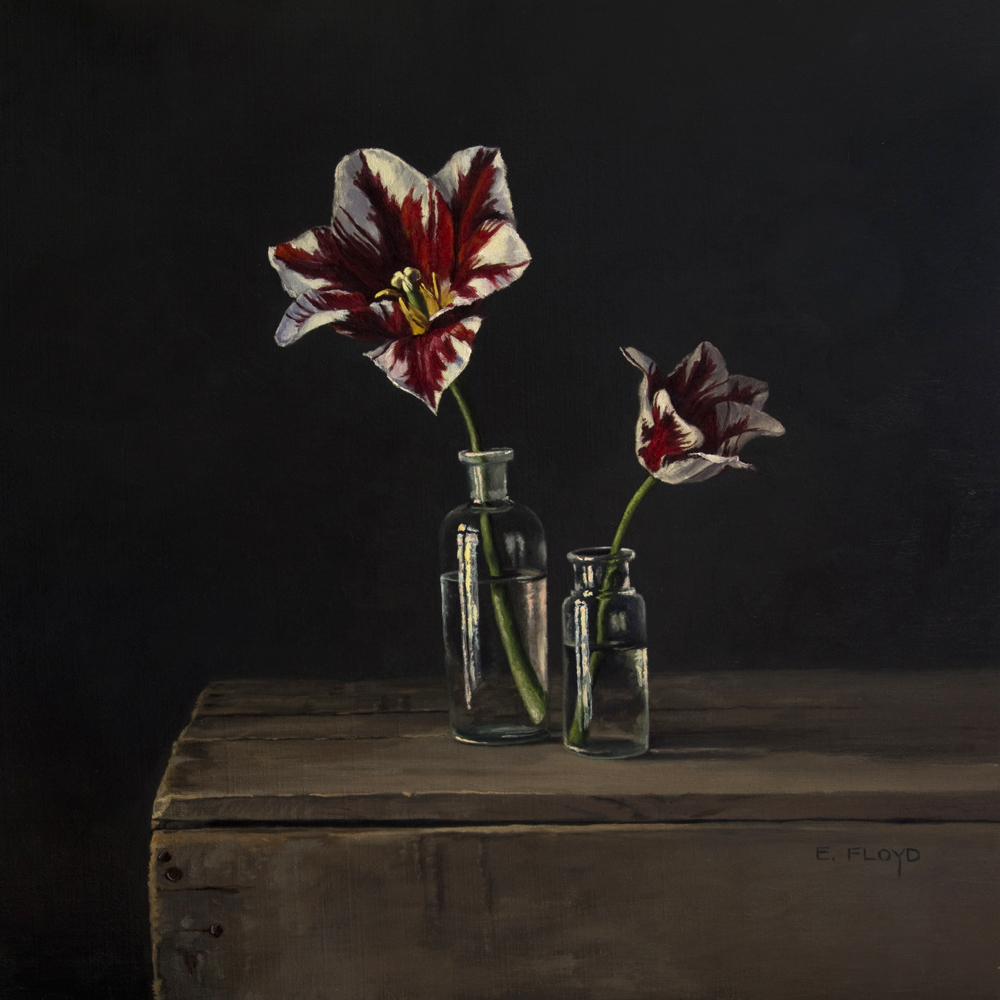 Rembrandt Tulips by Elizabeth Floyd, 20 x 20 inches, oil on linen