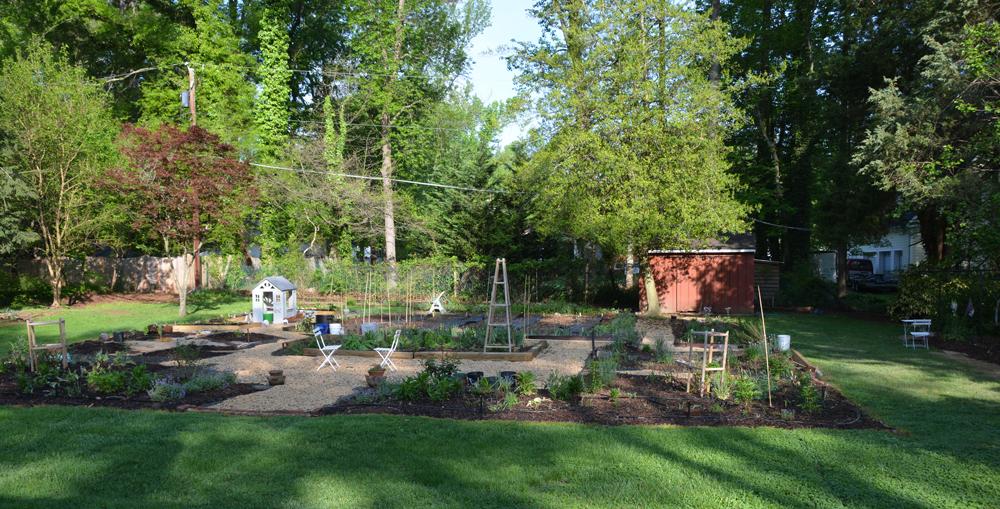 20170504-garden-update-00.jpg