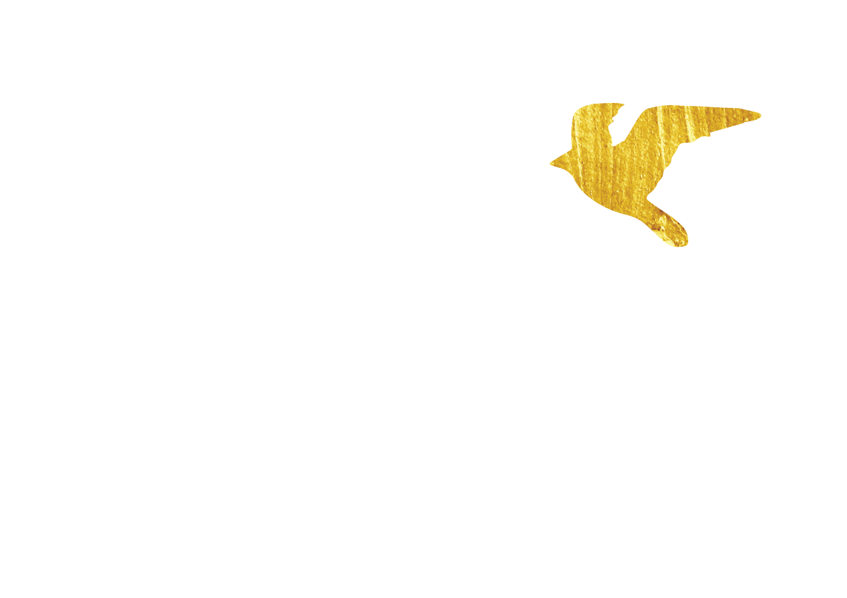 Little Bird Online Marketing