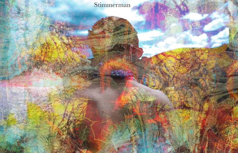 Stimmerman- Pleasant Vistas in a Somber Place (2018)
