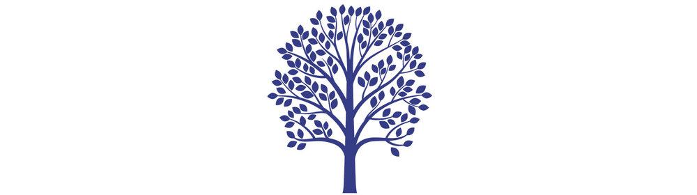 mature-tree-wide.jpg