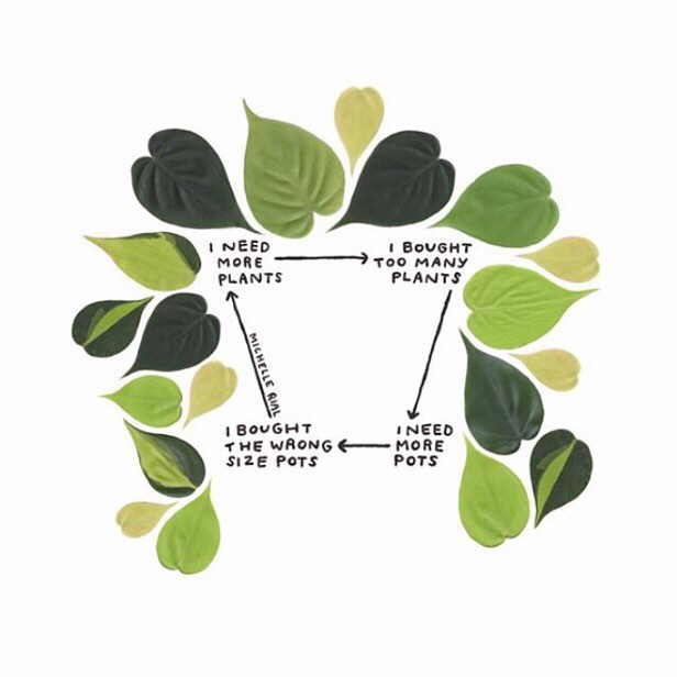 Oh my days, never have I ever seen anything so relatable! 🌿🌱💚 ⠀⠀ Artwork by @michellerial ⠀⠀ #plantlove #plantproblems #plantmama #houseplantlove #neverenoughhouseplants #neverenoughplantpots #ceramicplantpots #handmadeplantpots