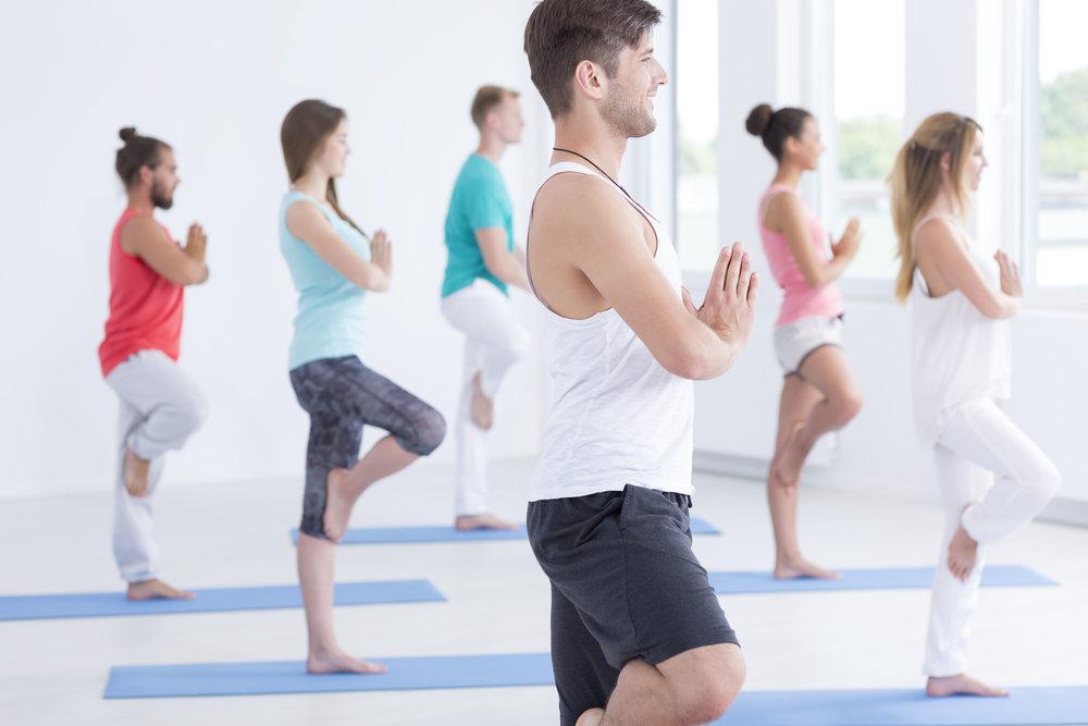 Hatha Yoga -