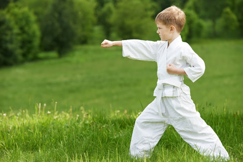 A la découverte du Hapkido - 6 à 12 ans - prix: 35.- chf