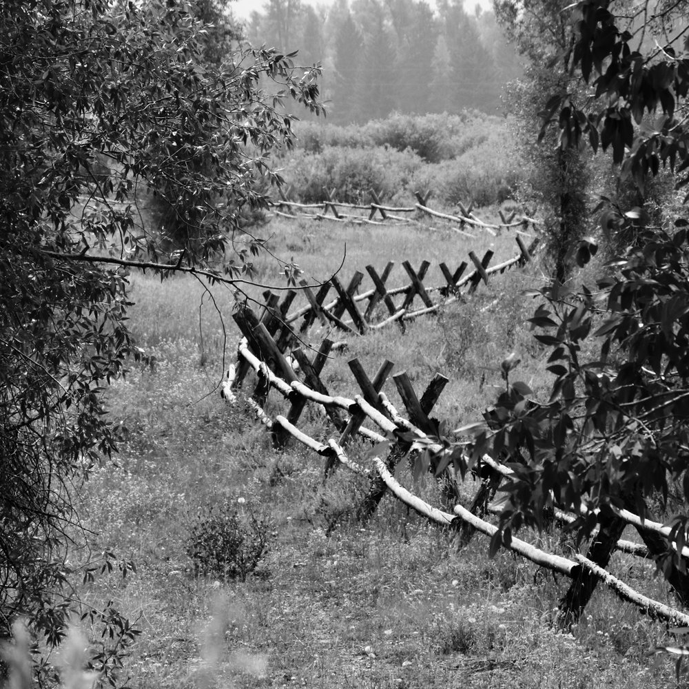 River Fence - Grand Teton
