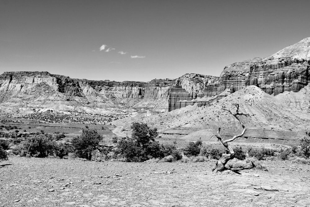 Stands Alone - Capitol Reef