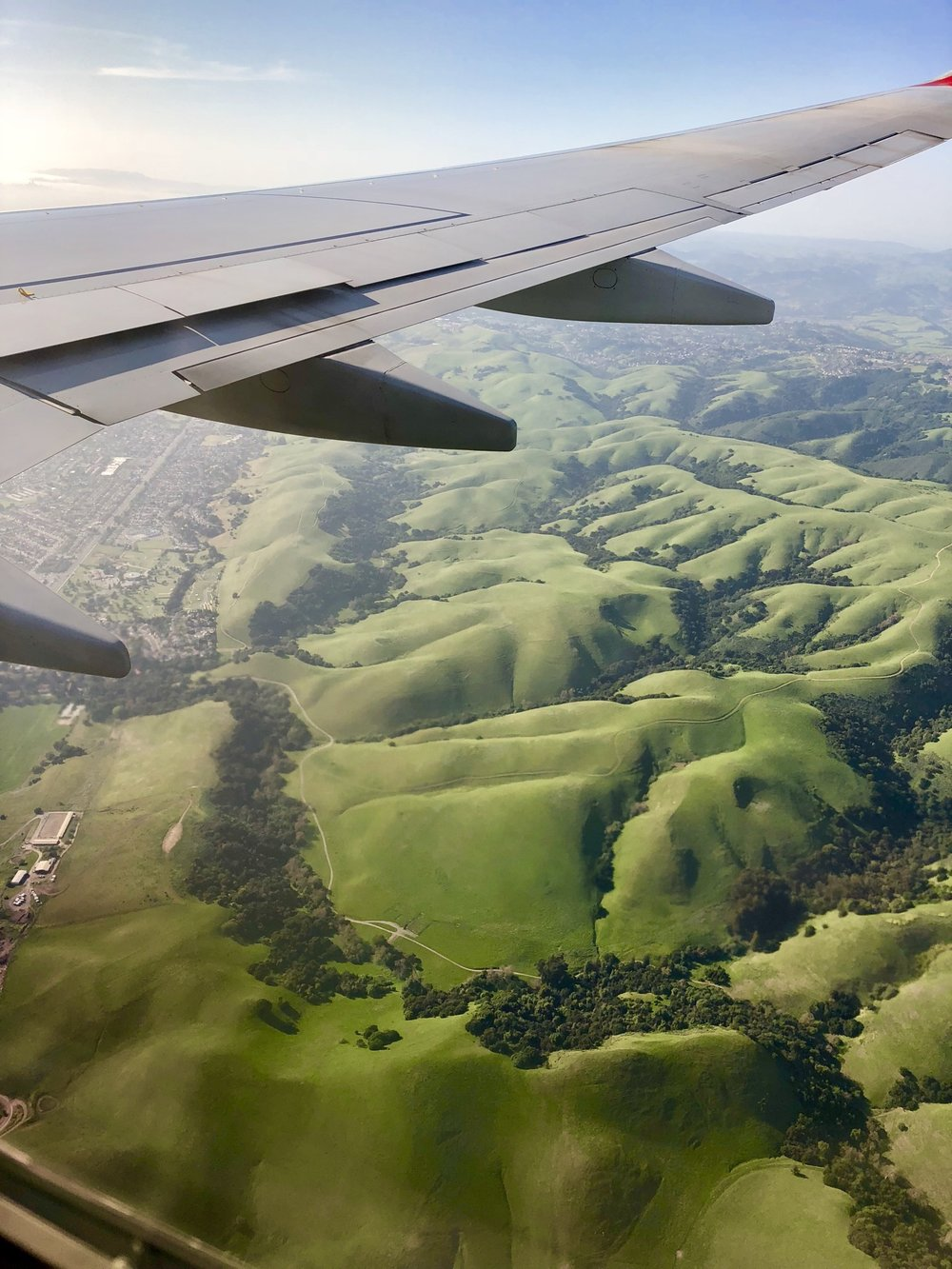 Rolling green foothills of California