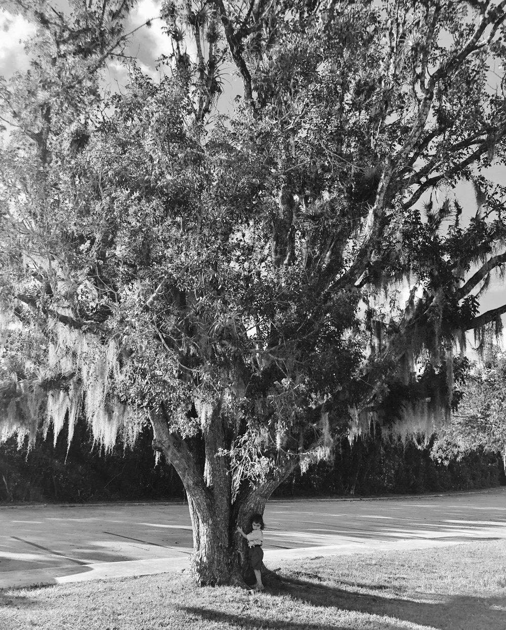Raising Her Right, Everglades