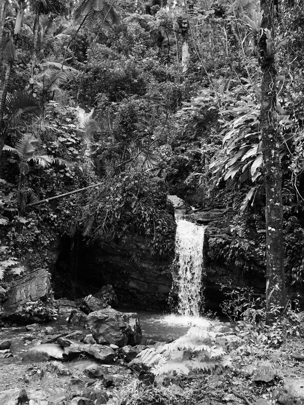 Diego Falls, El Yunque - Puerto Rico
