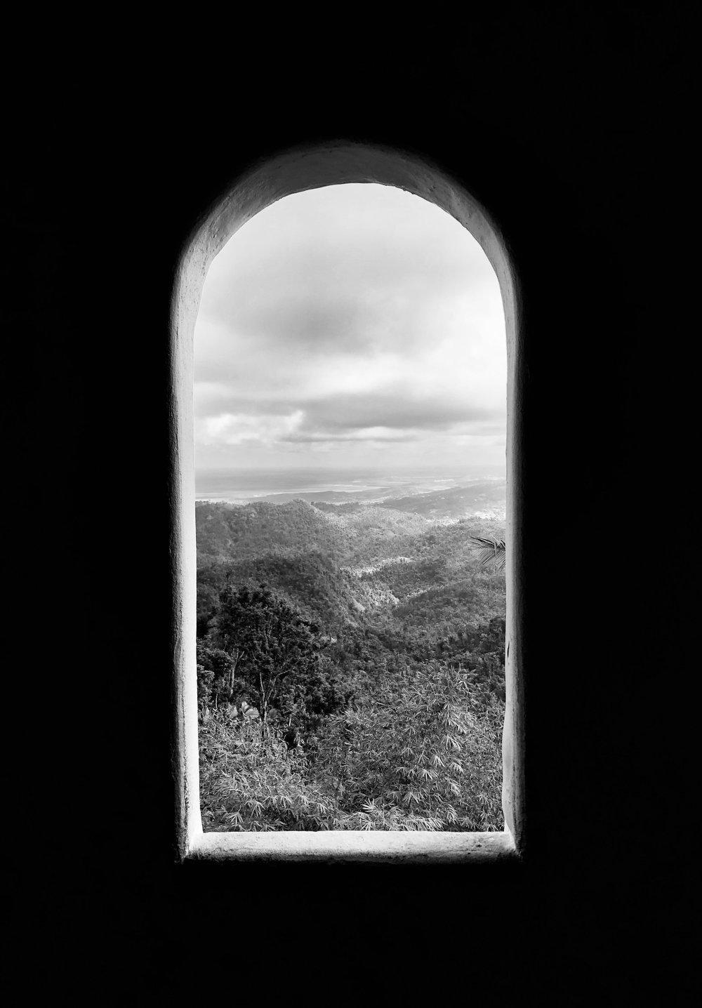 Perfectly Framed, EL Yunque - Puerto Rico