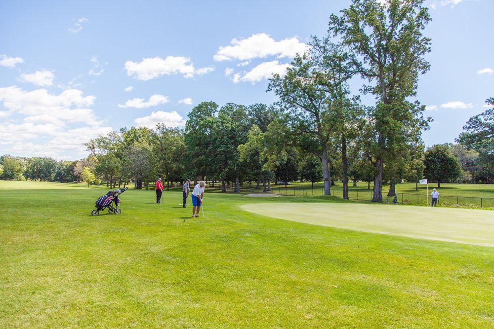 Golf_Beauty1.jpg