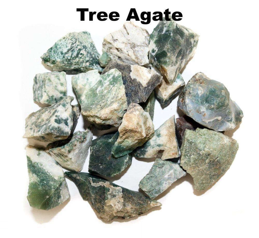 p_Tree_Agate_1.jpg
