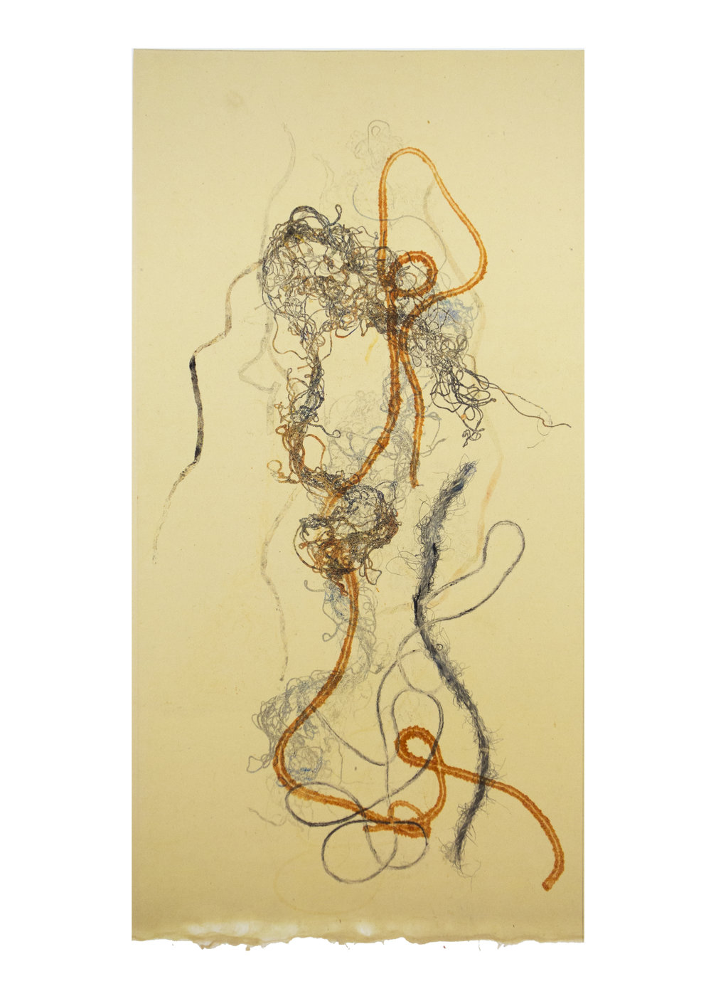 """Scroll 8, collagraph, image: 19"""" x 9-3/4"""""""