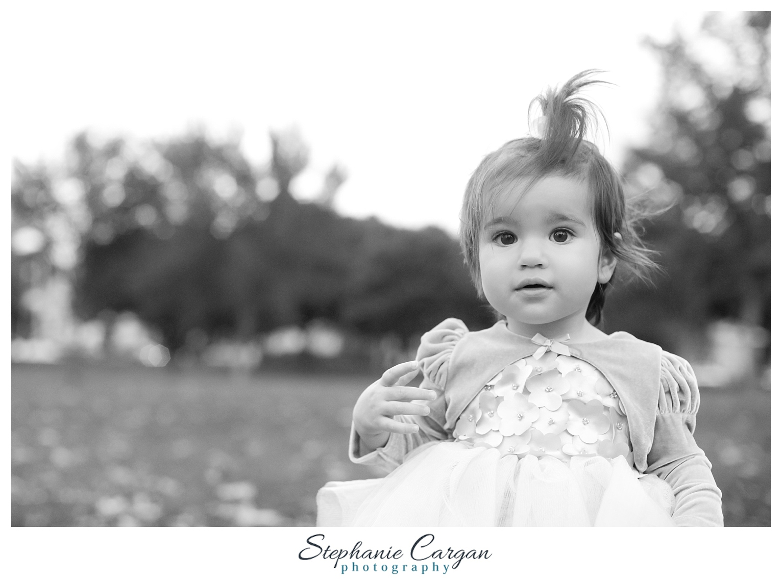 (c) StephanieCarganPhotography_1045