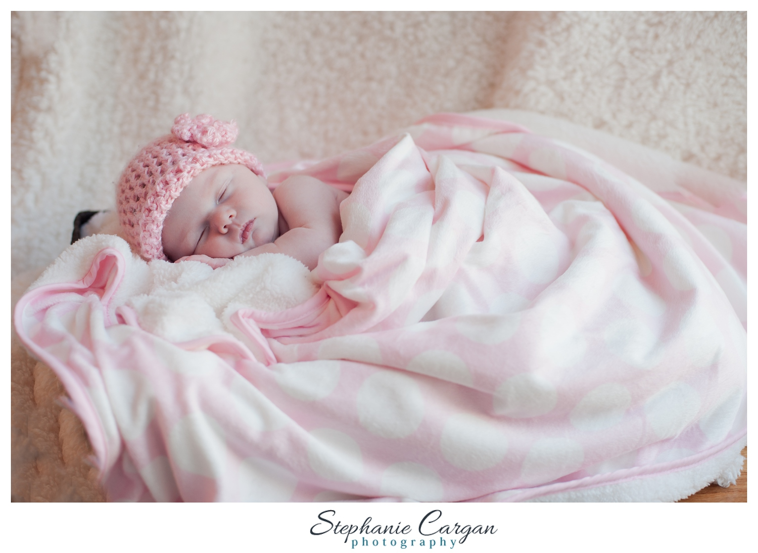 (c) StephanieCarganPhotography_1437