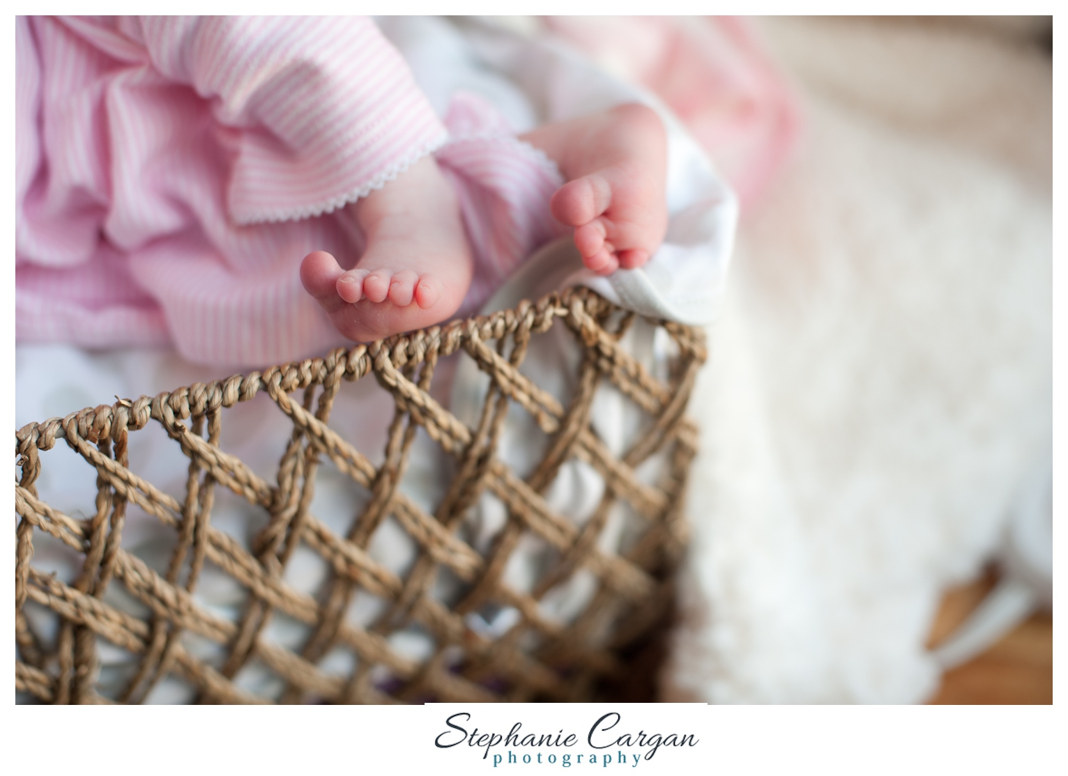(c) StephanieCarganPhotography_1438