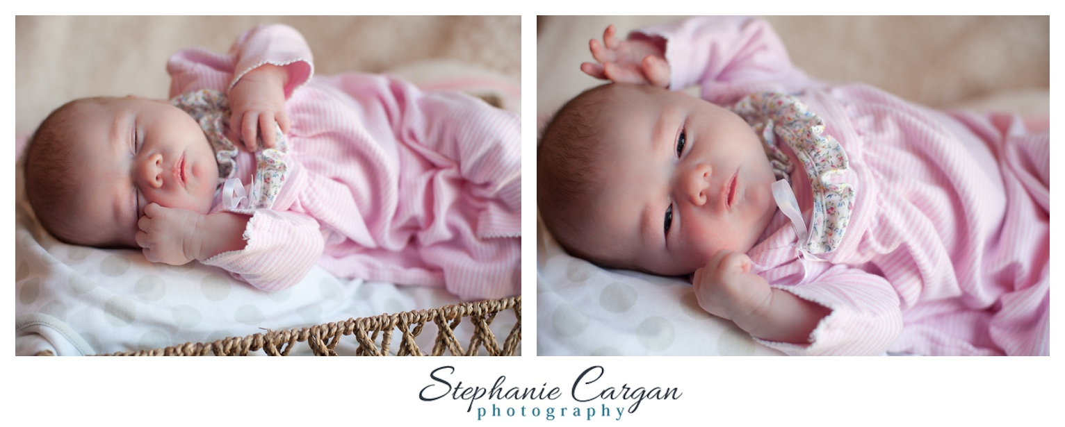 (c) StephanieCarganPhotography_1439