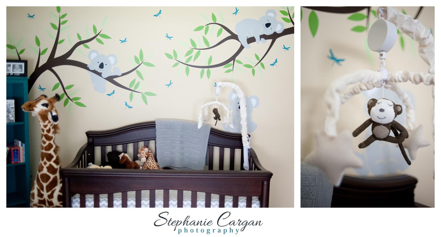 (c) StephanieCarganPhotography_1449