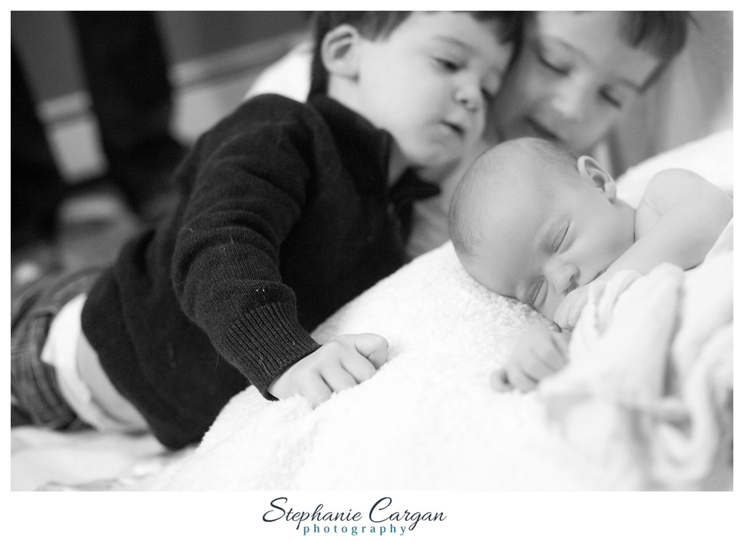 (c) StephanieCarganPhotography_1721