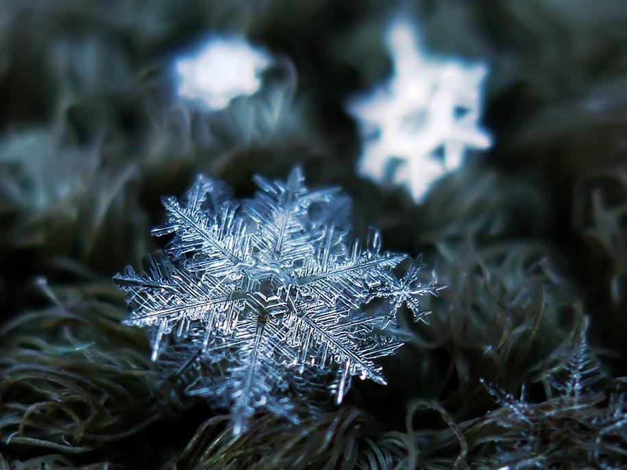 snowflake-closeup-13.jpg